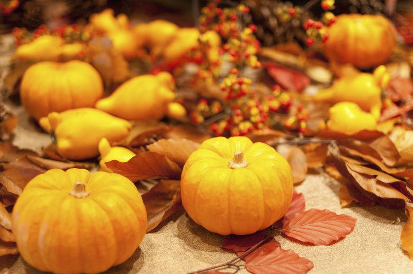 10月 october ハロウィーン ハロウィン